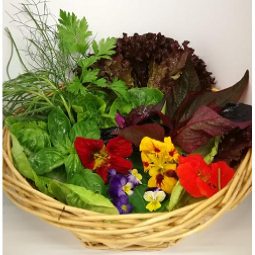 Trinity Farm Mix Leaf Salad Bag