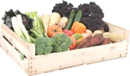 medium-vegetable-and-salad-box-7-p.png