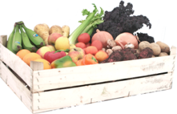 small-veg-fruit-salad-box-5-p.png