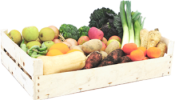 medium-vegetable-and-fruit-box-12-p.png