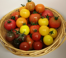 trinity-farm-heritage-tomatoes-250g-1733-p.png