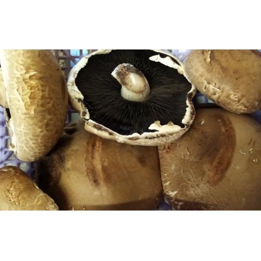 Mushrooms, Portobello - 250g