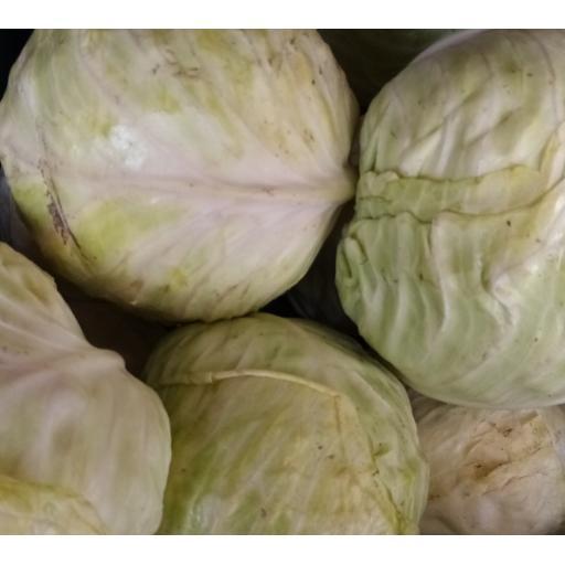 Cabbage, White - 1kg