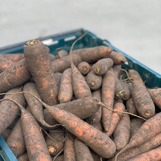 Carrots Muddy - 500g