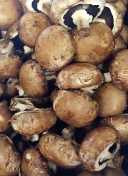 Chestnut Mushrooms.png