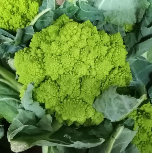 Romanesco Cauliflower.png