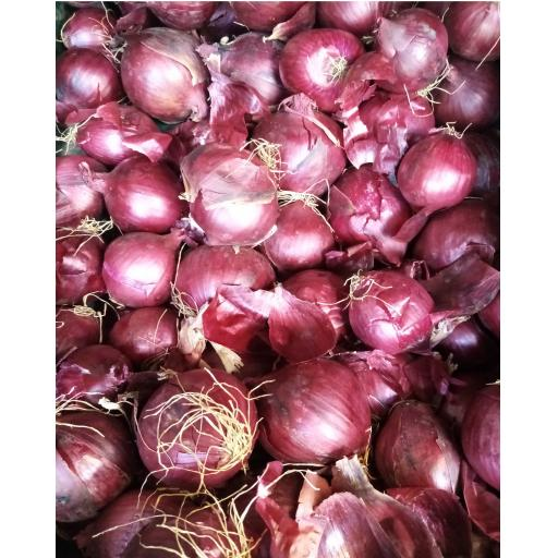 Onions, Red - 500g