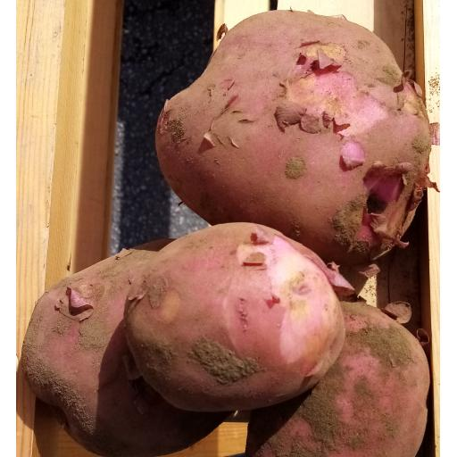 Potatoes, Red Skin - 1kg