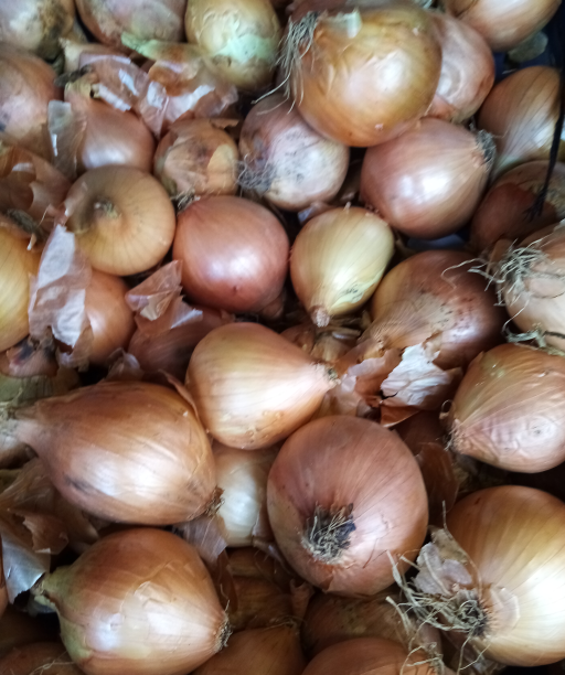White Onions.png