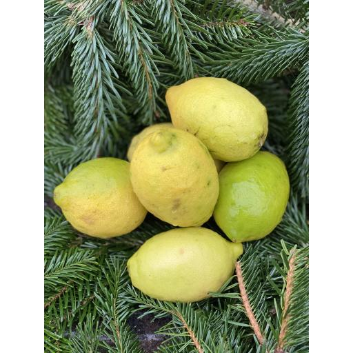 Lemons x 3 - approx 375g