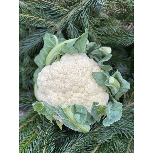 Cauliflower, Small White