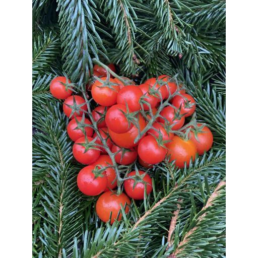 Tomatoes, Cherry Vine - 250g