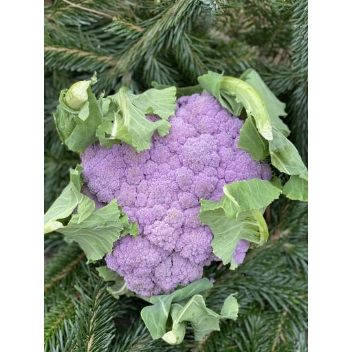 Cauliflower, Purple Graffiti