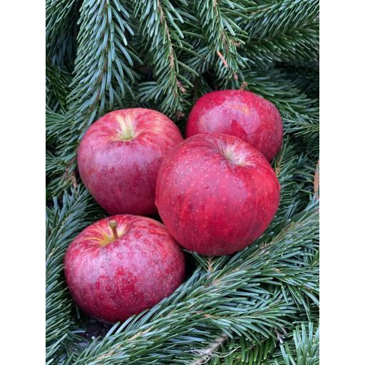 Apples (All Varieties) - 500g