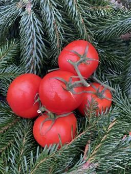 Large Vine Tomato.jpg