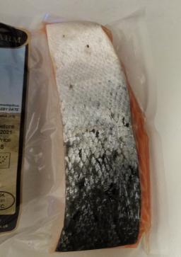 Salmon FIllet 1.png