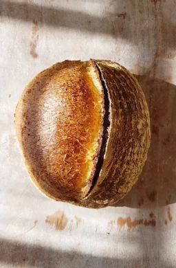 sourdough bloomer.png