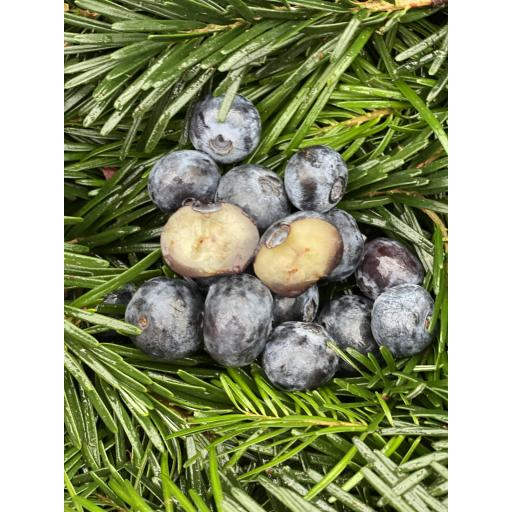 Blueberries - punnet 125g - weekly