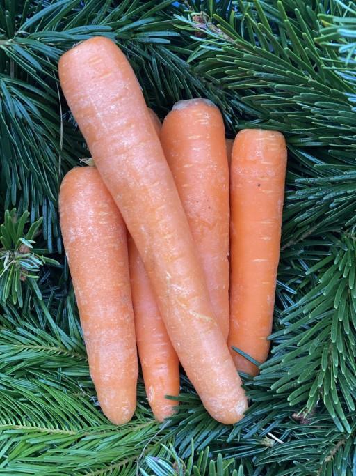 Clean Carrots.jpg