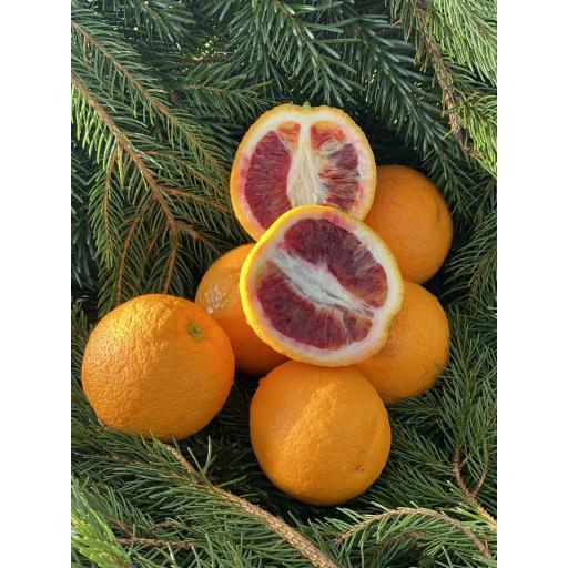 Oranges, Blood - 500g