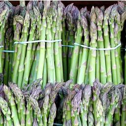 Asparagus_image.jpg