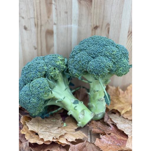 Broccoli Head - 350g