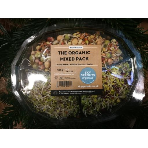 Mixed Bean Sprouts 160G