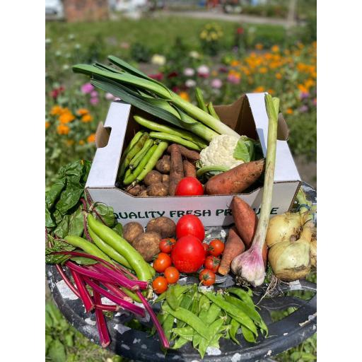 Vegetable Box - Fortnightly