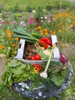 Veg + Salad Large.jpg