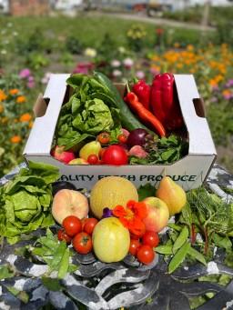 Fruit + Salad Large.jpg