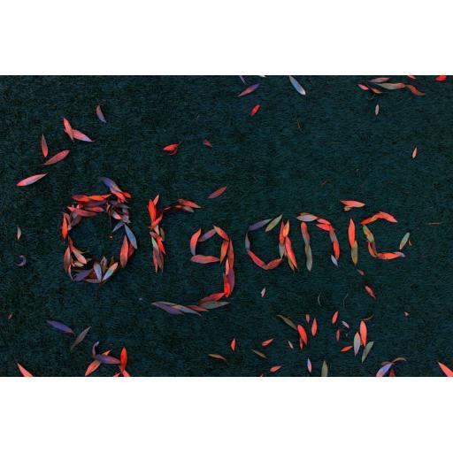Organic 4.jpg